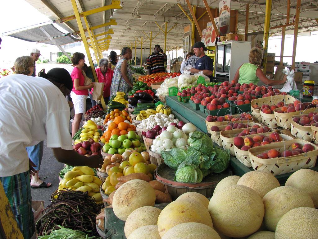 shopping-at-farmers-market-by-NatalieMaynor